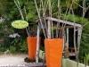 ao-thong-nai-pan-noi012