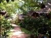 Baan Panburi Village 36
