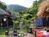 bamboo-bungalows02