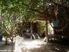 bamboo-bungalows12