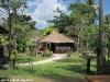 bamboo-bungalows25