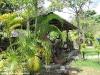 bamboo-bungalows26