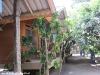 bamboo-bungalows30