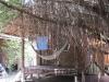 bamboo-bungalows32