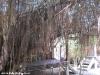 bamboo-bungalows33