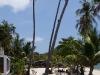 cocohut-beach-resort023
