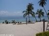 cocohut-beach-resort072