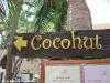 cocohut-beach-resort077