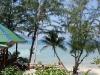 coconut-beach09
