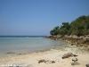 coconut-beach56