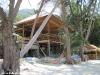 coconut-beach61