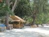 coconut-beach64