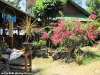 coral-bay-bungalows106