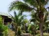 coral-bay-bungalows22