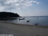 coral-beach-bungalow03