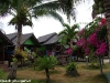 coral-beach-bungalow10