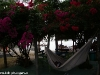 coral-beach-bungalow17