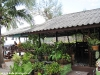 coral-beach-bungalow46