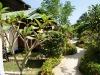 Dreamland Resort – Koh Phangan 12