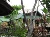 dreamland-resort-phangan071