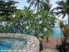 dreamland-resort-phangan079