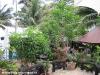 dreamland-resort-phangan080