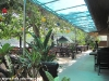 dreamland-resort-phangan090