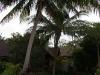 Green Papaya Resort – Salad Beach 08