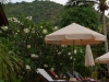green-papaya-resort008