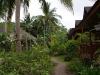 green-papaya-resort012