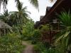 green-papaya-resort013