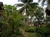 green-papaya-resort020