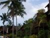 green-papaya-resort027