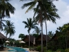 green-papaya-resort028