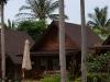 green-papaya-resort032