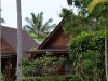 green-papaya-resort033