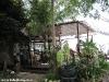 green-papaya-resort109