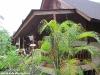 green-papaya-resort112