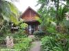 green-papaya-resort119