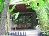 green-papaya-resort124