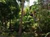 haad_khom_bungalow21