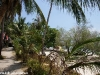 leela_beach_bungalows19