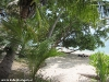 leela_beach_bungalows73