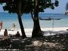 nice_beach_bungalows13