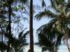ocean-view-resort24