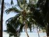 ocean-view-resort25