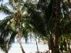 ocean-view-resort26
