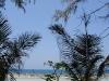ocean-view-resort30