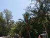 ocean-view-resort36