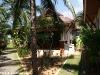 phangan_bayshore_resort041